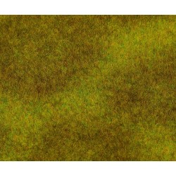 180489 Łąka z wysoką trawą - Premium