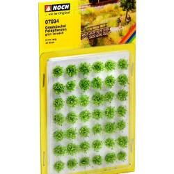 Noch 07034, Gęste kępy traw, kwiaty zielone, 42 szt. wys.6 mm