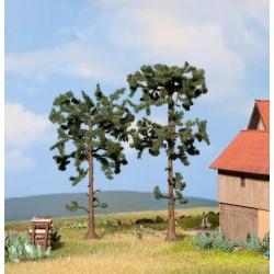 Noch 21912, Dwie pinie (drzewka 11,5+13,5 cm)