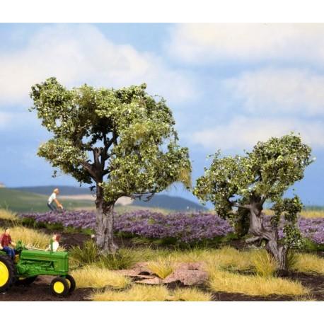 Noch 21995, Dwa drzewa oliwne, 6 i 9 cm, H0 TT