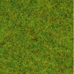 Noch 50210, Trawa statyczna, zielona wiosenna, 100g.