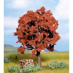 Noch 21730, Drzewo duże jesienne