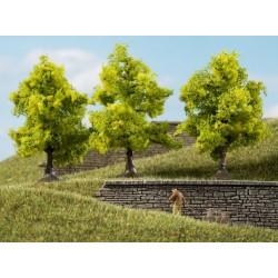 Auhagen 70935, Drzewa liściaste, 3 sztuki, ~7 cm. Jasnozielone.