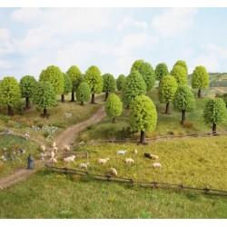 NOCH 32801, Zestaw 25 drzew (~35-50mm), N / Z