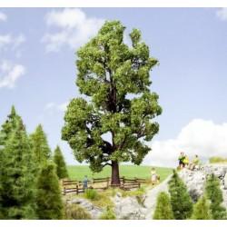 Noch 21802, Kasztan, drzewko wys. ~18,5 cm