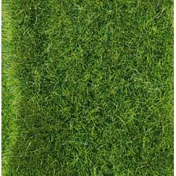 Heki 1577, Wildgras - dzika trawa wysoka, dywanik 28 x 14 cm.