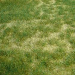 Heki 1842, Wildgras - pastwisko, dzika trawa letnia, dywanik 45 x 17 cm.