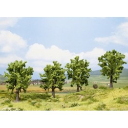 Noch 25005, zestaw 4 drzew: buki, 13 cm, H0.
