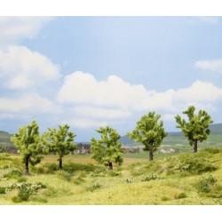 NOCH 25001, pięć drzew owocowych, ~8 cm (H0/TT)