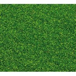 170702 Posypka trawa zielona majowa