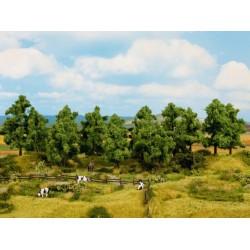 NOCH 24600, Zestaw drzew liściastych (10-14 cm), 8 sztuk. Skala H0 / TT.