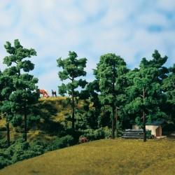 Auhagen 71941, Zestaw 12 drzew (13 cm).