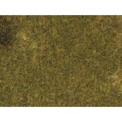 "Auhagen 75117 Mata trawa "" jesienna łąka"""