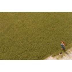 """Auhagen 75614, """"Trawa"""" elektrostatyczna 4,5 mm, 50 g, zieleń oliwkowa."""