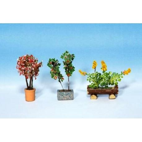 14014 Rośliny ozdobne w donicach