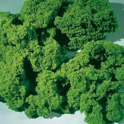 Auhagen 76976, Pianka morska zielona, średnia